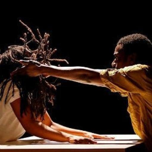 Danse Élargie - Dance Expanded